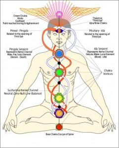 analogia cadduceo sette chakra