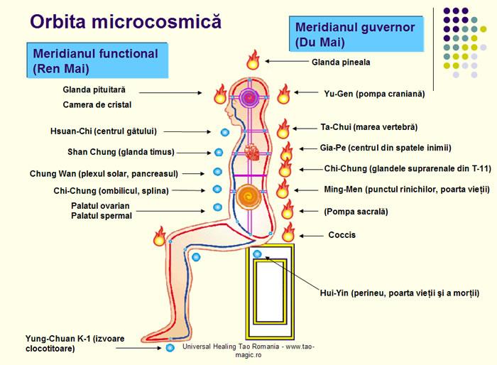 orbita microcosmica taoista